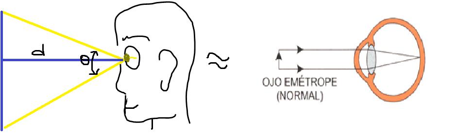 373ddce459 Cuando los rayos forman su foco por delante de la retina se dice que el ojo  es miope (dificultad para ver de lejos); las personas con ojos miopes  adquieren ...